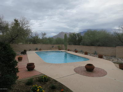 Tucson Single Family Home For Sale: 6750 N Sesame Lane