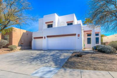 Tucson Single Family Home For Sale: 6504 N Shadow Bluff Drive