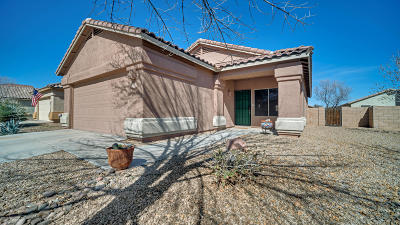 Marana Single Family Home For Sale: 11274 W Farm Village Drive