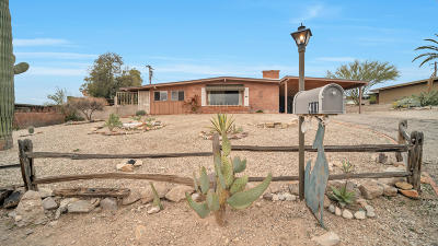Tucson Single Family Home For Sale: 411 N Camino Santiago
