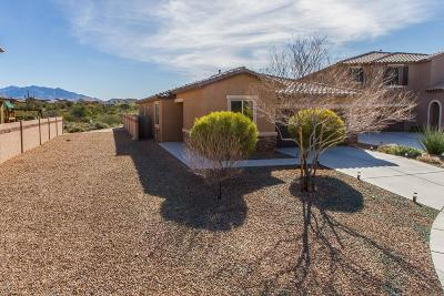 Tucson Single Family Home For Sale: 6181 W Bandelier Court