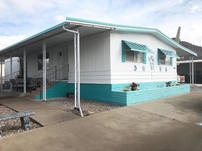 Pima County, Pinal County Manufactured Home For Sale: 5442 W Tumbling F Street