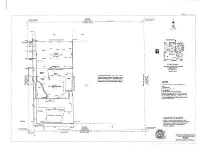Tucson Residential Lots & Land For Sale: 910 N Richey Boulevard #12