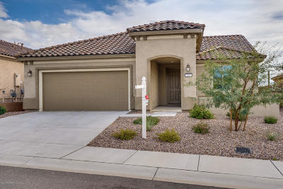 Marana Single Family Home For Sale: 7047 W River Trail