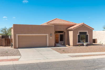 Pima County, Pinal County Single Family Home For Sale: 163 N Cheesebrush Avenue