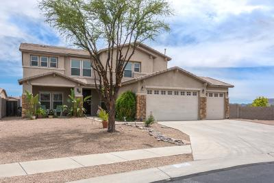 Tucson Single Family Home For Sale: 5563 W Beetle Drive