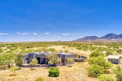 Cochise County Single Family Home For Sale: 3351 W Horse Ride Loop