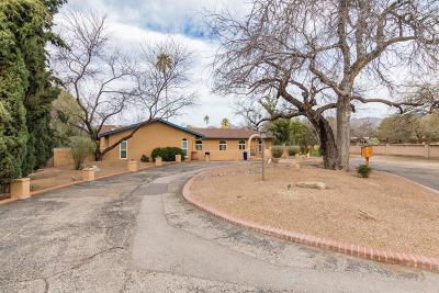 Tucson Single Family Home For Sale: 11861 Injun Place