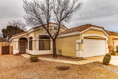 Tucson Single Family Home For Sale: 2390 N Creek Vista Drive