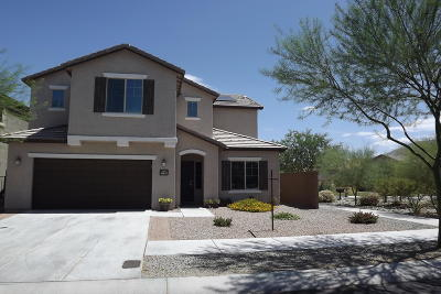 Pima County, Pinal County Single Family Home For Sale: 10879 E White Sage Drive