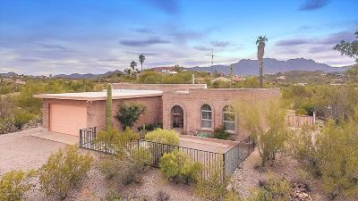 Tucson Single Family Home For Sale: 4481 N Tortolita Road