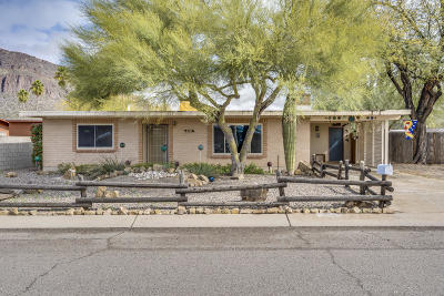 Pima County, Pinal County Single Family Home For Sale: 4455 S Paseo Don Juan