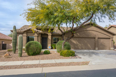 Pima County, Pinal County Single Family Home For Sale: 12843 N Paleozoic Drive