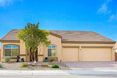 Marana Single Family Home For Sale: 11045 W Snaketown Street