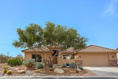 Pima County, Pinal County Single Family Home For Sale: 39936 S Sand Crest Drive