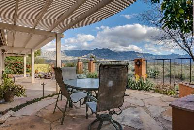 Single Family Home For Sale: 64631 E Canyon Shadows Lane
