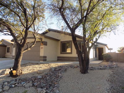 Pima County, Pinal County Single Family Home For Sale: 7218 S Canterbury Tale Drive