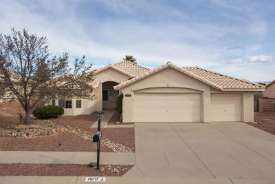 Sahuarita Single Family Home Active Contingent: 1670 W Calle Carinosa