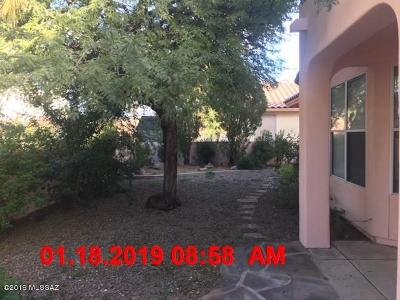 Tucson Single Family Home For Sale: 9811 N Star Ranch Place
