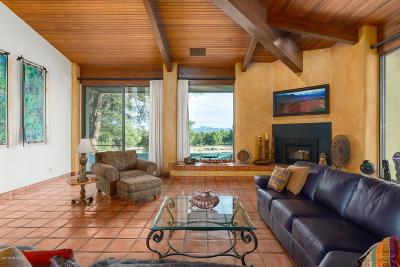 Patagonia Single Family Home For Sale: 27 Little Hog Canyon Lane