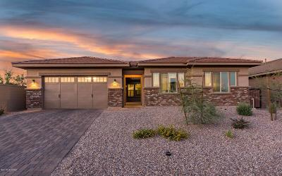 Oro Valley Single Family Home Active Contingent: 13250 N Amberwing Place