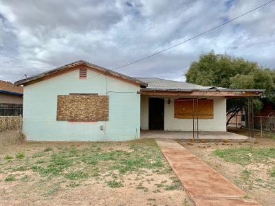 Pima County Single Family Home For Sale: 3612 S 13th Avenue