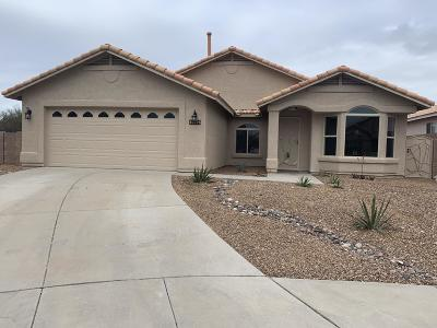 Pima County, Pinal County Single Family Home For Sale: 10226 E Buffaloberry Loop