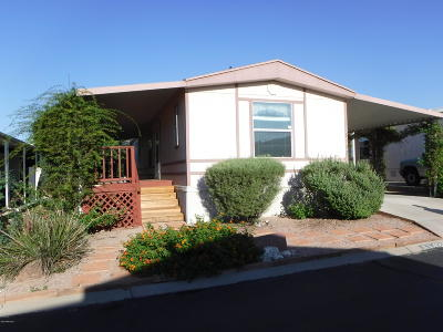 Pima County, Pinal County Manufactured Home For Sale: 6142 S Mainside Drive