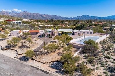 Tucson Single Family Home For Sale: 3850 N Pantano Road