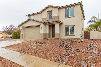 Pima County, Pinal County Single Family Home For Sale: 3573 E Silver Buckle Place