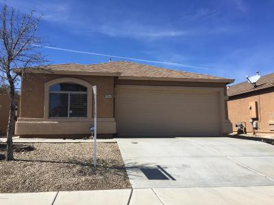Pima County, Pinal County Single Family Home Active Contingent: 7816 S Baja Stone Avenue