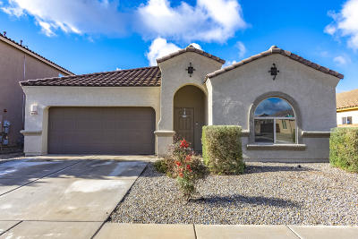Vail Single Family Home For Sale: 12348 E Calle Riobamba