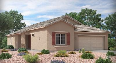 Pima County Single Family Home For Sale: 11101 W Riverton Drive