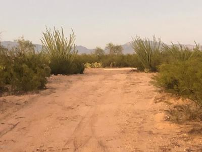 Pima County, Pinal County Manufactured Home For Sale: S Mann Avenue