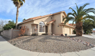 Tucson Single Family Home For Sale: 8031 E Hampton Drive