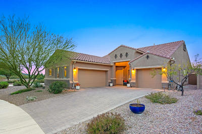 Marana Single Family Home Active Contingent: 9601 N Hebden Way