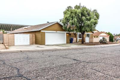 Tucson Single Family Home For Sale: 10114 E Emily Drive