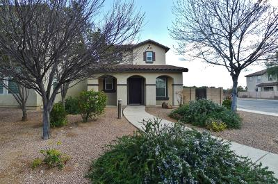 Tucson Single Family Home For Sale: 2716 N Saramano Lane
