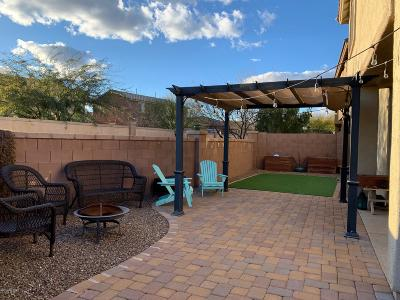 Sahuarita Single Family Home For Sale: 13856 S Camino Flauta