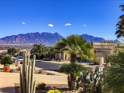 Pima County Townhouse For Sale: 2509 S Pecan Valley Place