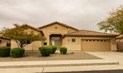 Marana Single Family Home For Sale: 12295 N Lost Shadow Court