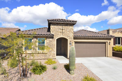 Marana Single Family Home For Sale: 7158 W Cape Final Trail