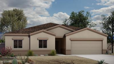 Pima County Single Family Home For Sale: 4151 E Spring Water Drive
