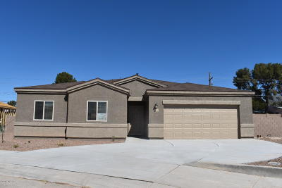 Pima County Single Family Home For Sale: 6199 S Water Fountain Drive