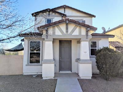 Sahuarita Single Family Home For Sale: 106 W Paseo Celestial
