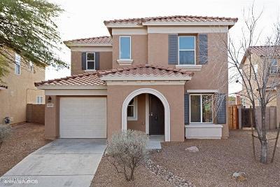 Tucson Single Family Home For Sale: 5028 E Desert Straw Lane