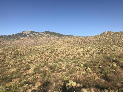 Residential Lots & Land For Sale: 7309 S Red Hill Road #85