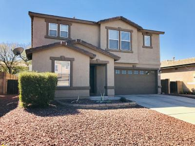 Tucson Single Family Home Active Contingent: 10127 N Blue Crossing Way
