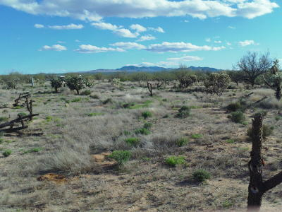 Residential Lots & Land Active Contingent: 8760 S Marstellar Road