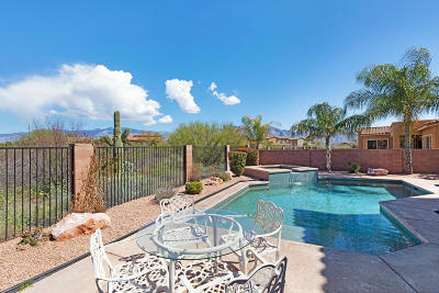 Tucson Single Family Home For Sale: 11924 N Mesquite Hollow Drive